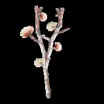 «Mystique_Designs_Flower_Bath» 0_87a4d_a0315b3_S