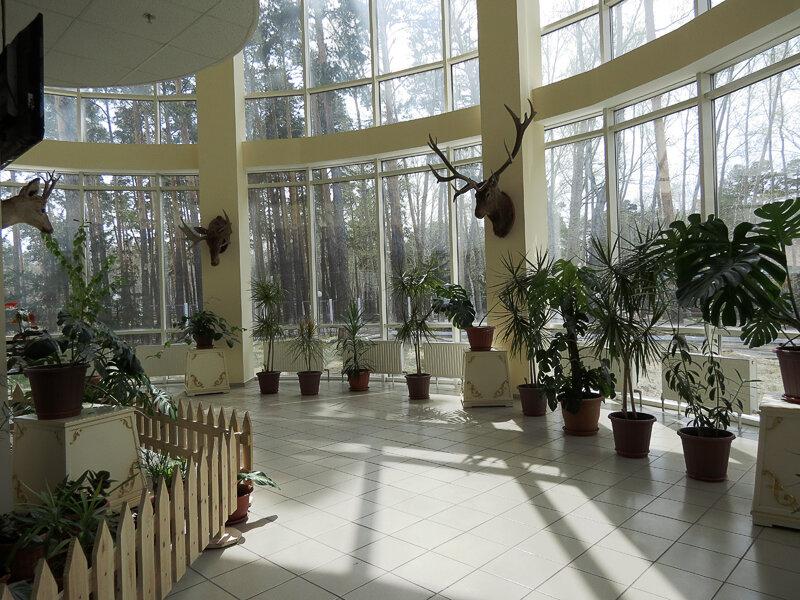 Боровое, Музей Природы - 2012 год. Комментарии к фото - Кокшетау Онлайн