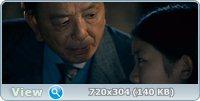 Защитник / Safe (2012/DVD9/DVD5/DVDRip/1400Mb/700Mb/AVC)