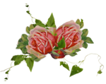 snackpackgu_ASMayCollab_flower1.png