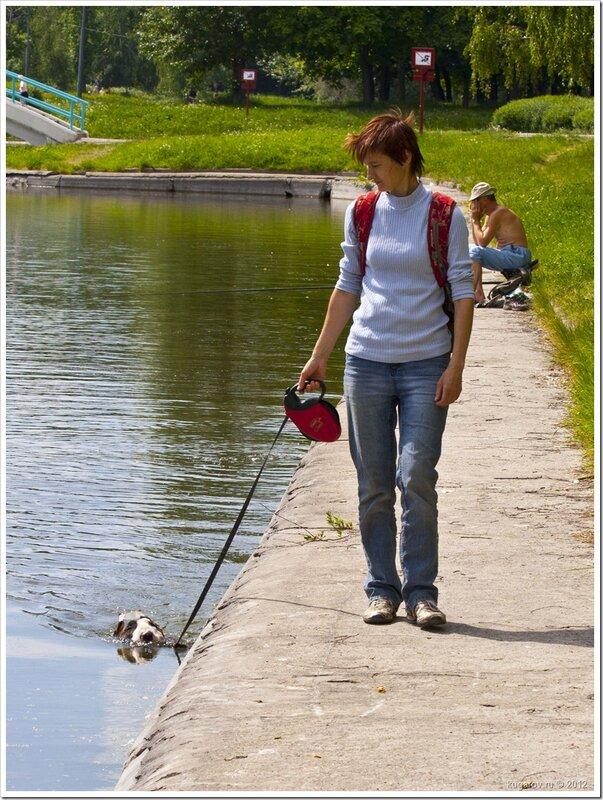 Вот как надо выгуливать собаку