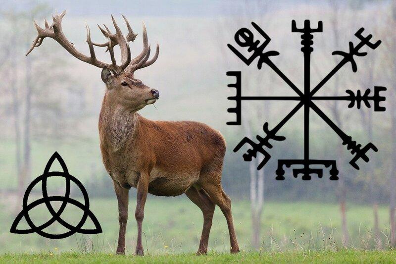 Кельтский гороскоп животных