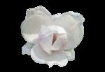 «Romantic_Illusion»  0_85ecf_22d3831f_S