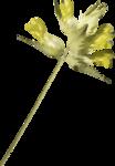«A butterfly is a flying flower»  0_86b01_fc477f76_S