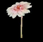 «Mystique_Designs_Flower_Bath» 0_87a18_41896352_S