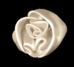 jdau_Reminisce_rose3.png