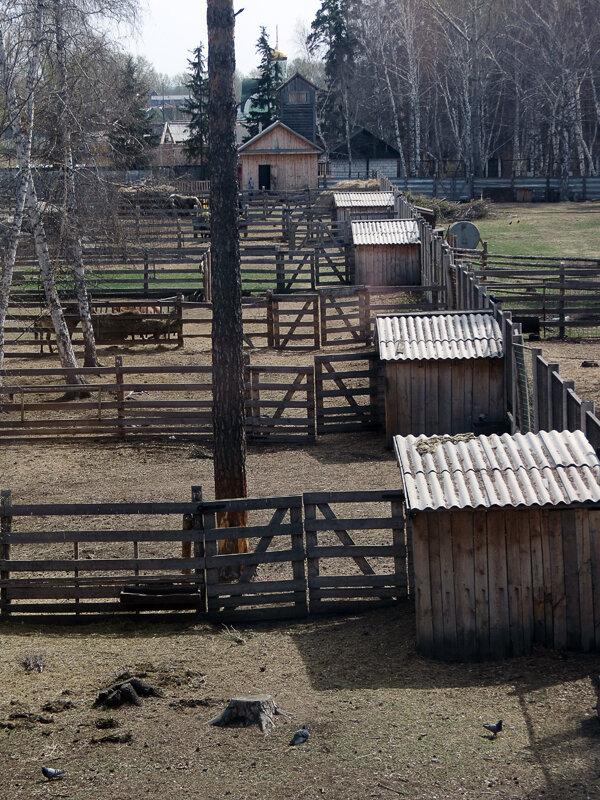 Боровое, Музей Природы, зоопарк - 2012 год. Комментарии к фото - Кокшетау Онлайн