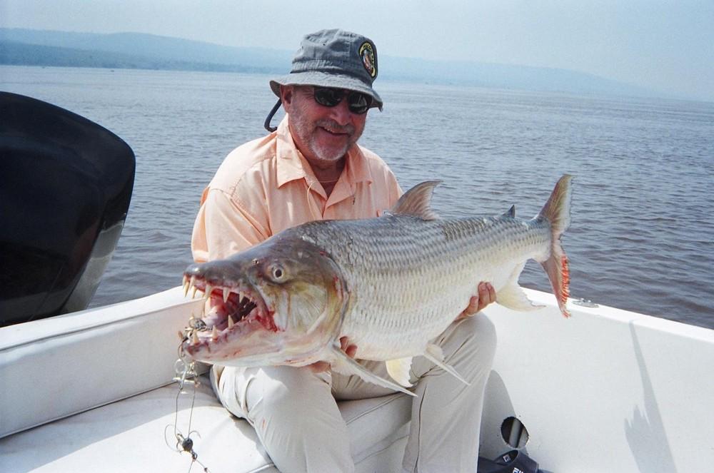 huge freshwater fish