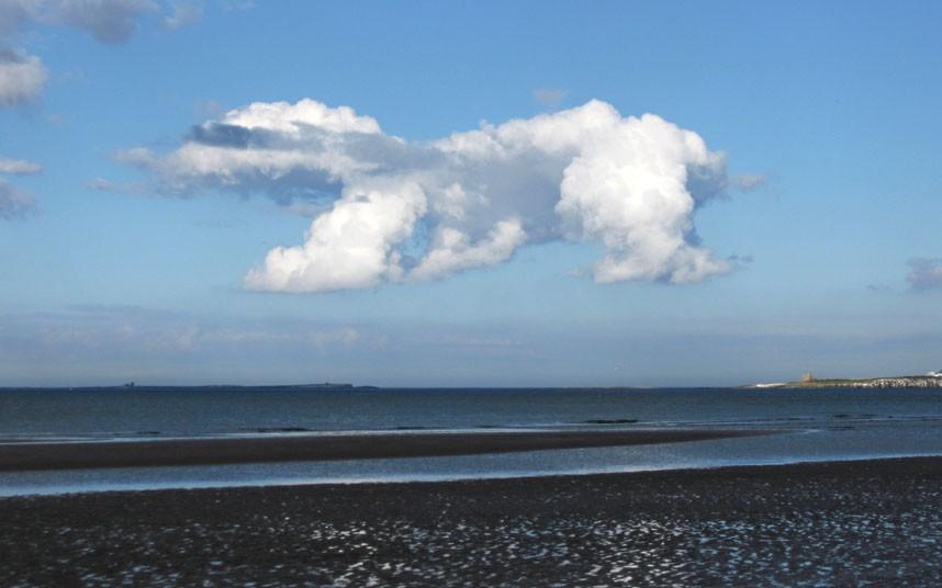 облаков в виде животных