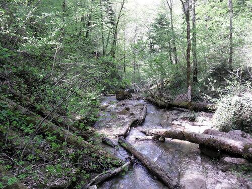 В горах, у реки, апрель 2012