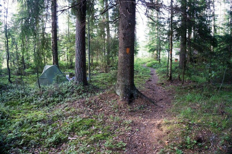 наша палатка возле Lentamon laavu