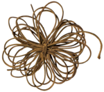 etc_dan_ssbeach_Flower Rope.png