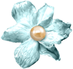 feli_syd_blue flower.png