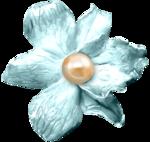 feli_syd_blue flower.png