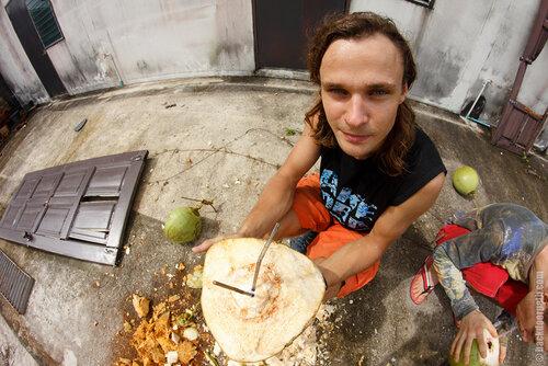 coconut, кокос