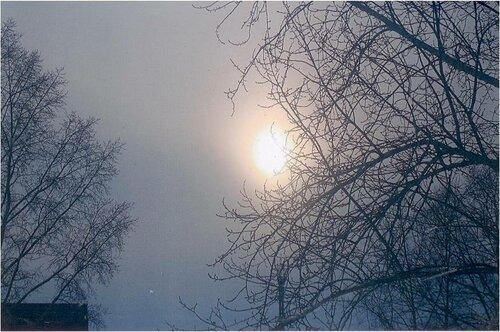 Туманная весна