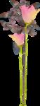 MRD_RT_purple-pink flower.png
