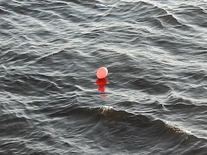 Шарик в реке