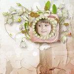 «whitebell flowers»  0_87997_ae15436e_S