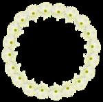 «whitebell flowers»  0_879c5_c88fa880_S