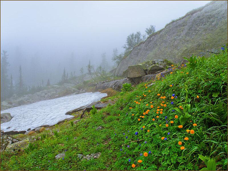 Типичный пейзаж