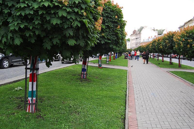 Проспект Шевченко - флаги на клёнах