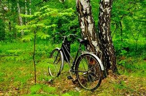 Я буду долго гнать велосипед