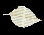 natali_autumn11_paper_leaf2.png