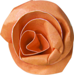 natali_autumn11_paperflower1.png