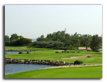 Jebel Ali Golf Resort & Spa 5*