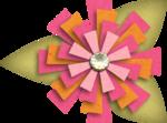 «RIVER_ROSE_5_KIT» 0_893d9_9b5341f_S