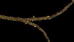 «RIVER_ROSE_5_KIT» 0_8940a_b1da1023_S