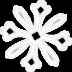 «RIVER_ROSE_5_KIT» 0_89414_9b05ef64_S