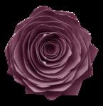 flower18-(lthdsgn).png