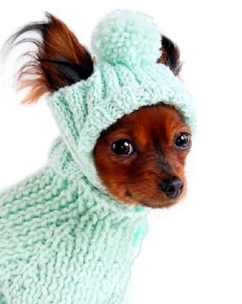 Вязаная одежда для маленьких собак в Москве - Доска объявлений Товаро