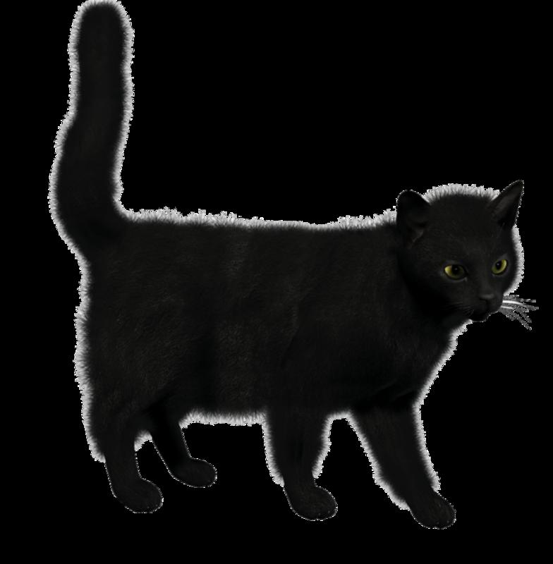 """Предпросмотр - Схема вышивки  """"Черный кот """" - Схемы автора  """"marusya84 """" - Вышивка крестом."""