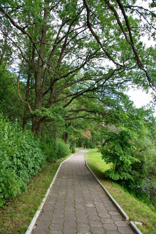 Марфино, Дорожка вдоль пруда
