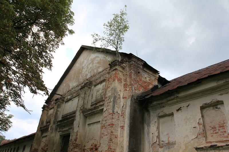 0 79454 daf2c21d XL Поездка в город Высокое, в Беларуси