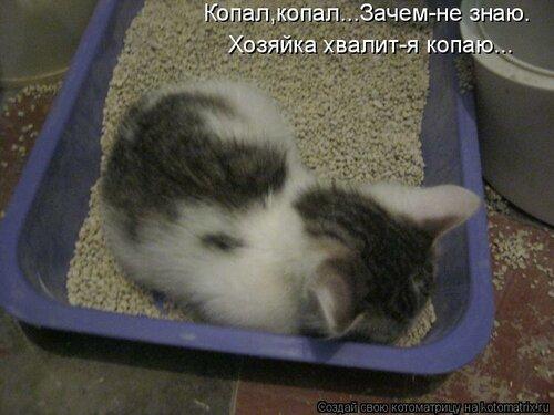 http://img-fotki.yandex.ru/get/6214/63000659.8d/0_74302_d9473aff_L.jpg