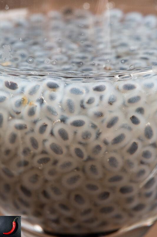 Сперма в рот hd качестве 3 фотография