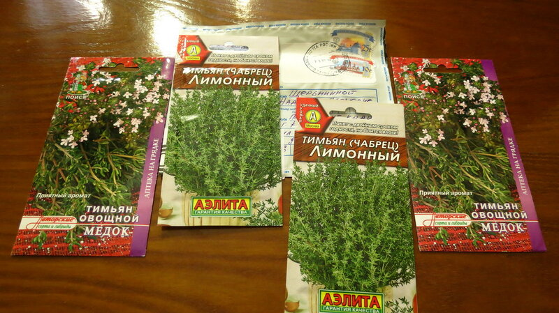 Чабер огородный выращивание из семян когда сажать 7