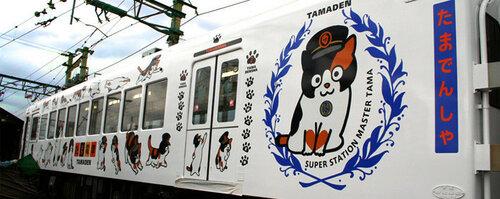 Поезд с изображением кошки Тамы