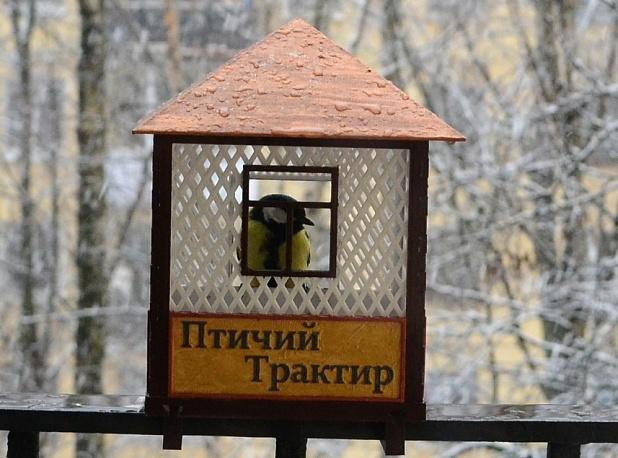 Скворечник «Птичий трактир». А что, ведь птицы тоже имеют право на отдых. Скачивайте здесь .