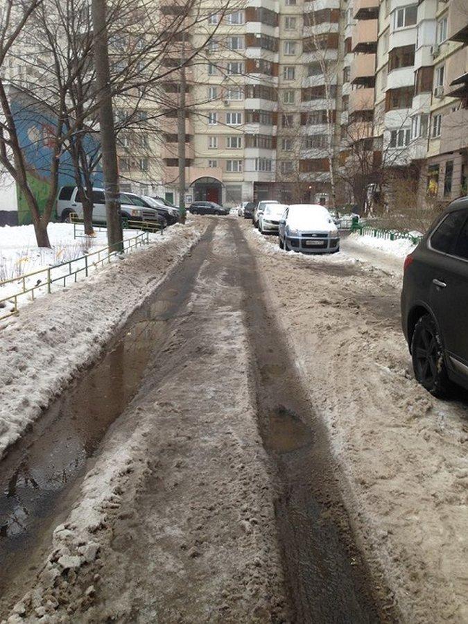 Главу одного из московских районов уволили за фотошоп