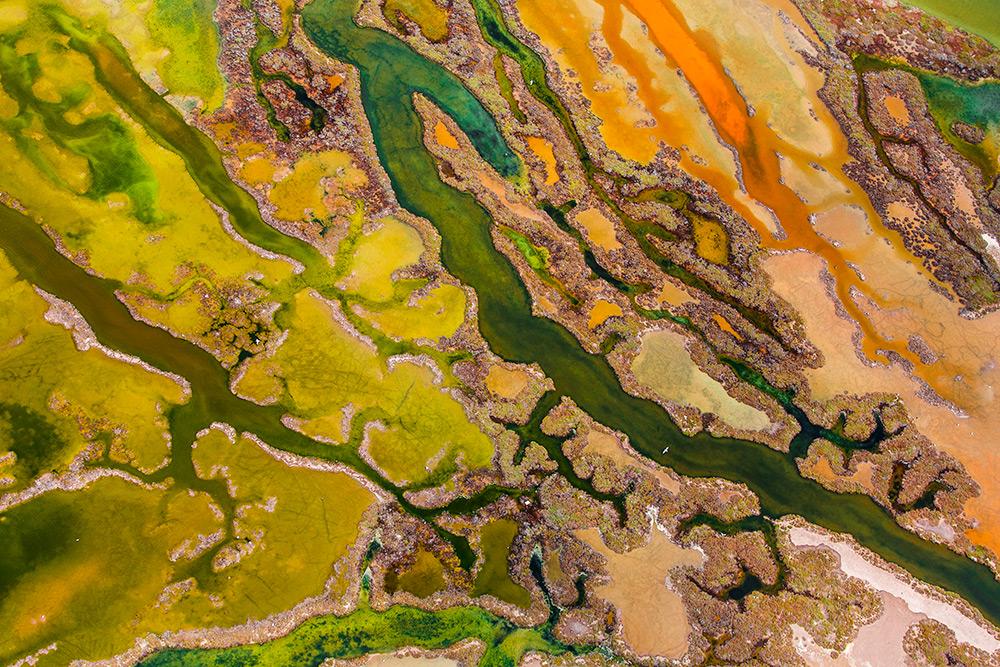 The art of algae , Peter Soler, Spain. From the Sky, WINNER.