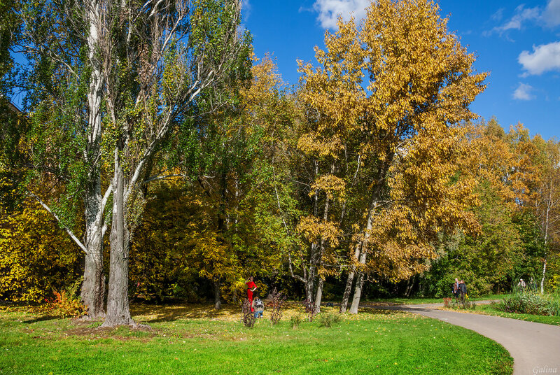 Фотосессия в осенним парке