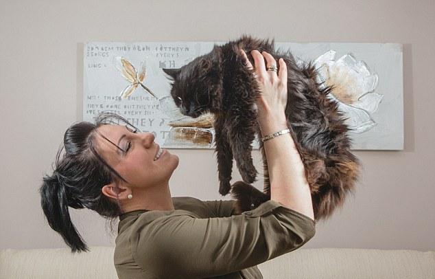 К британке вернулся одноглазый кот пропавший 11 лет назад