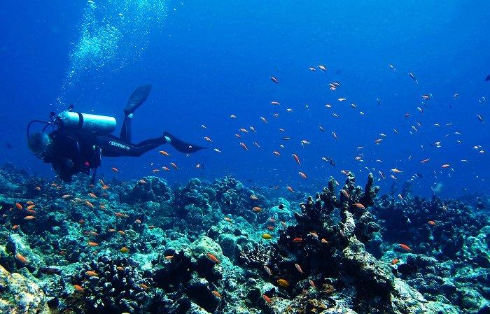 5. Андаманские острова Белые песчаные пляжи и нетронутое синее море – вот чем славятся Андаманские о