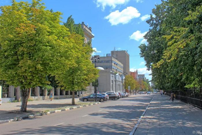Митинг вчесть Дня единства сплотил 11 тыс. саратовцев