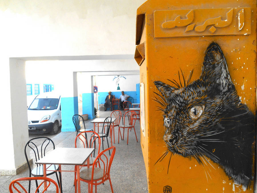 Colorful Stenciled Cats on the City Walls